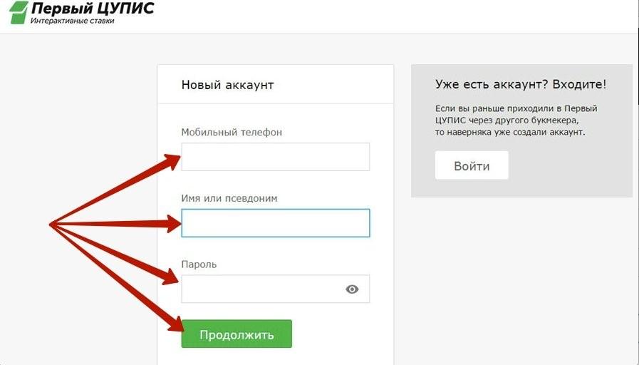 Регистрация в ЦУПИС